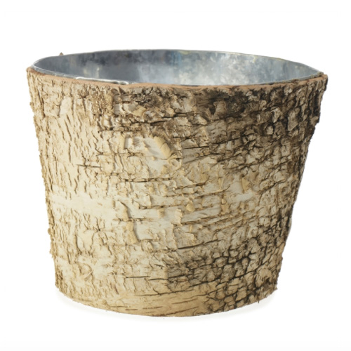 Birch Pot