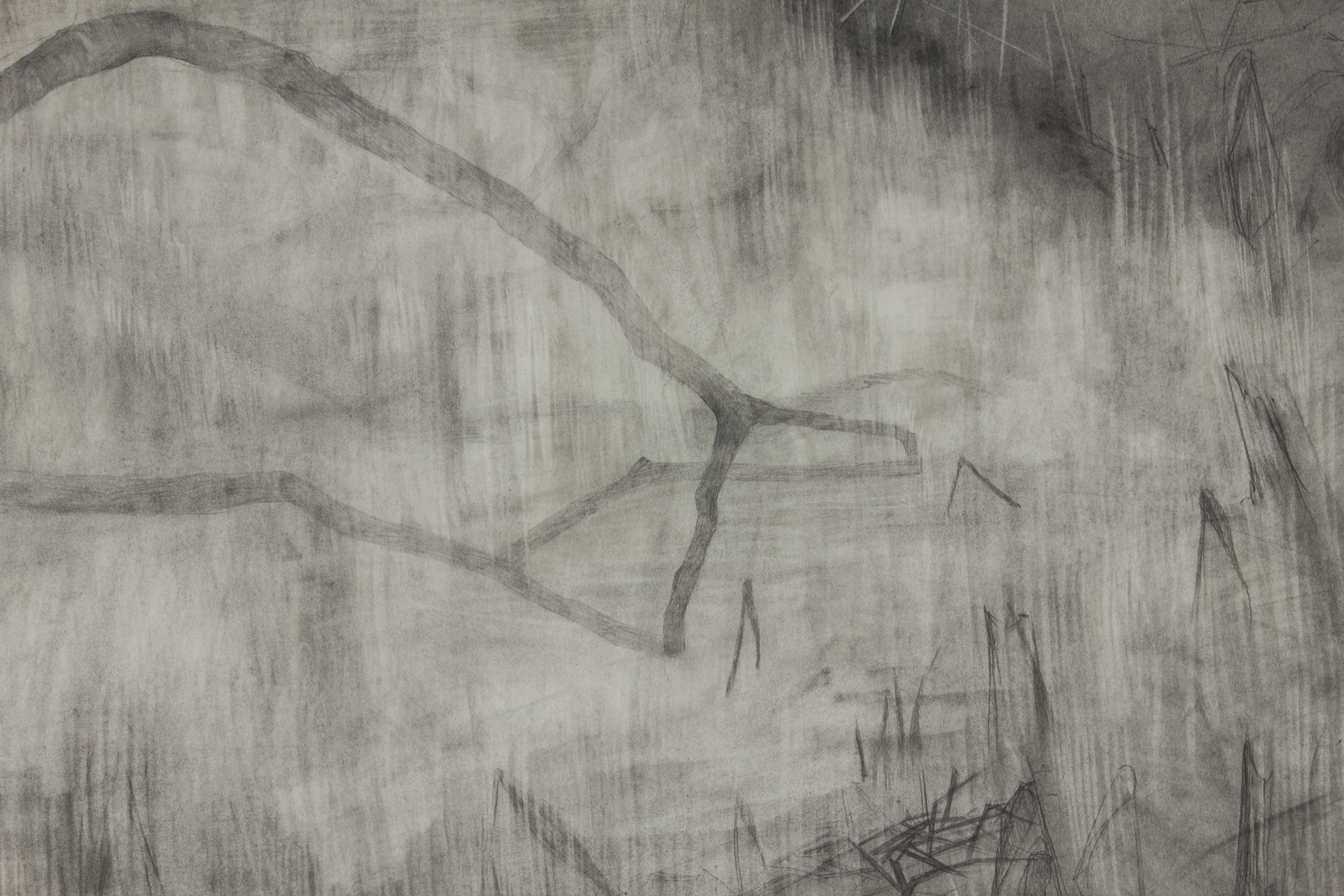 People from our countryside never liked the change _drawing_detail