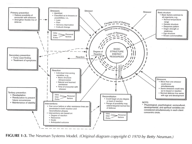 17NSM overview as PDF17.jpg