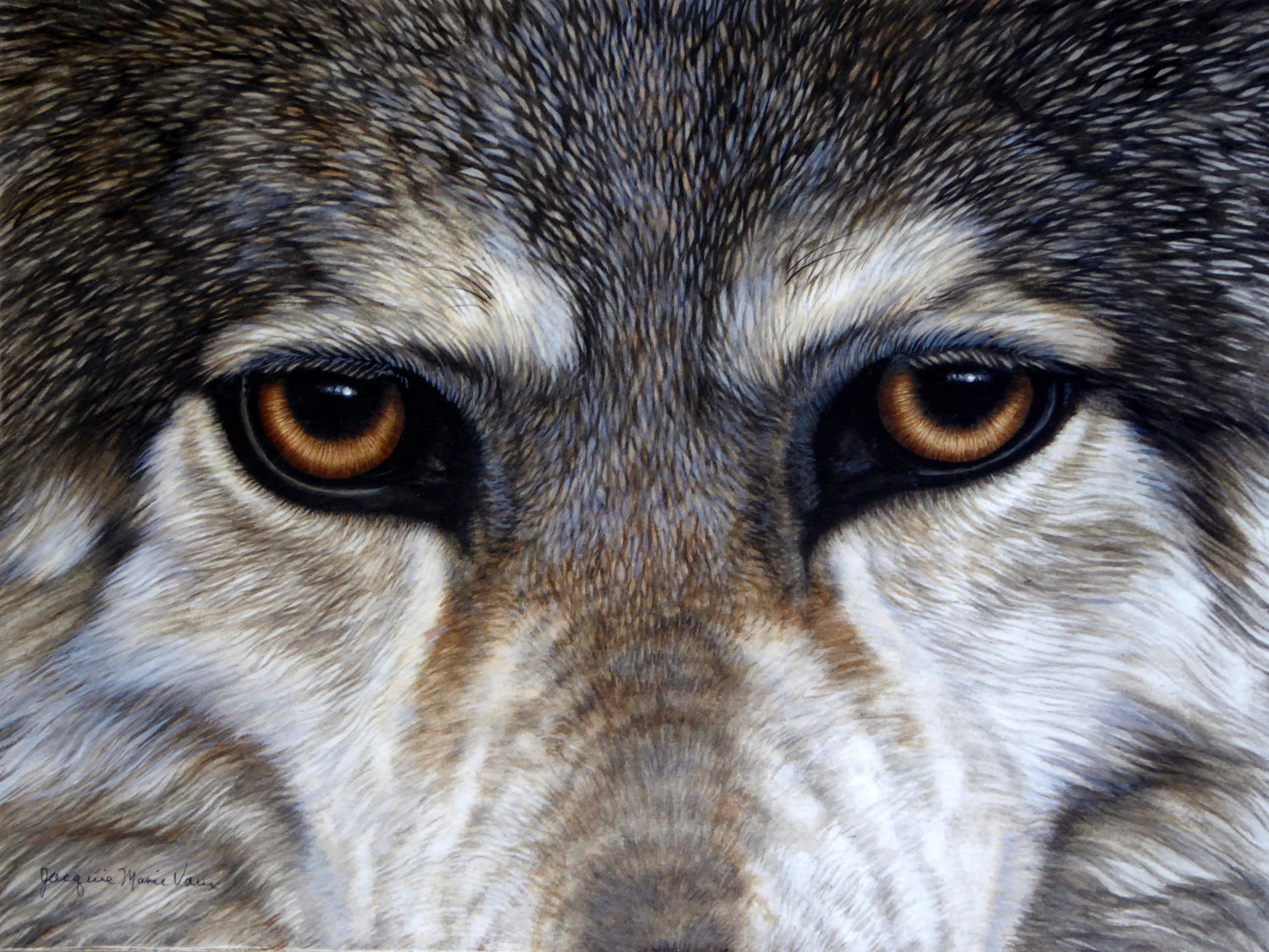 Eyes of Wolf-Cm.jpg