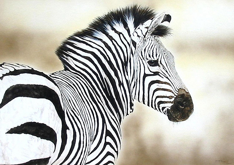 Zebra-Cm.jpg