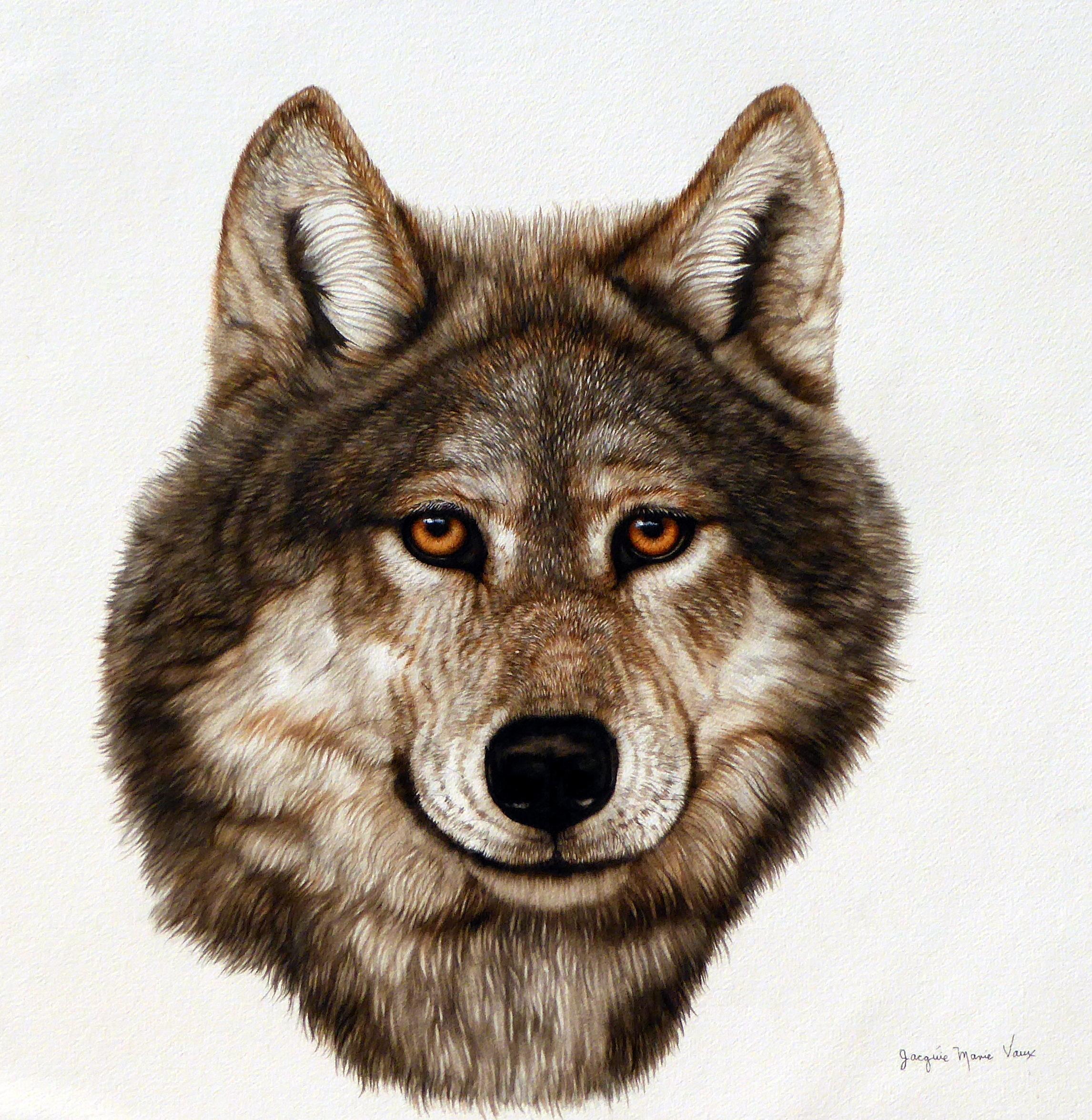 1-Wolf-Poet-2018.jpg