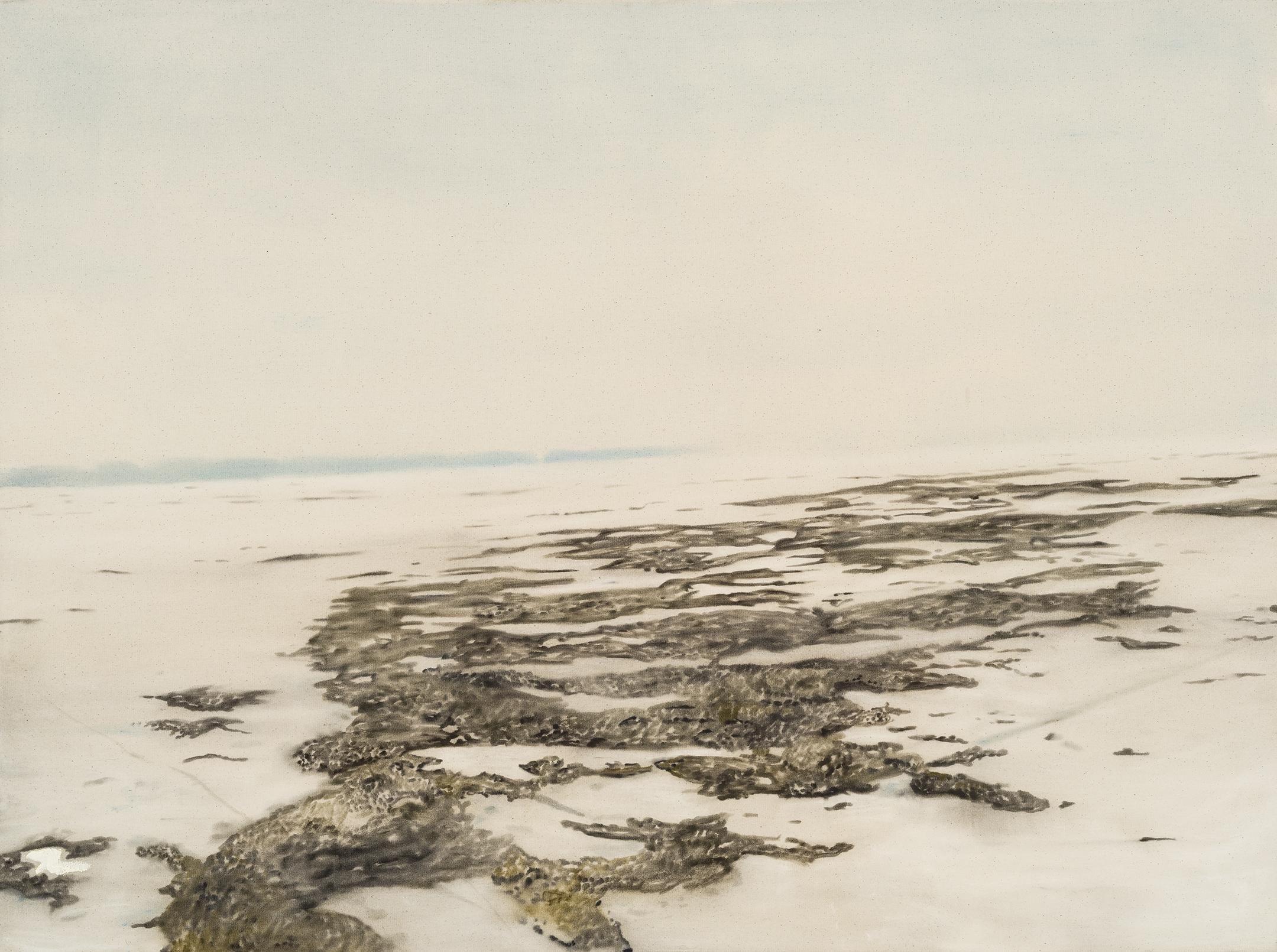 Paysage nordique 8 , 2016. Huile et fusain sur toile, 36 x 48 pouces