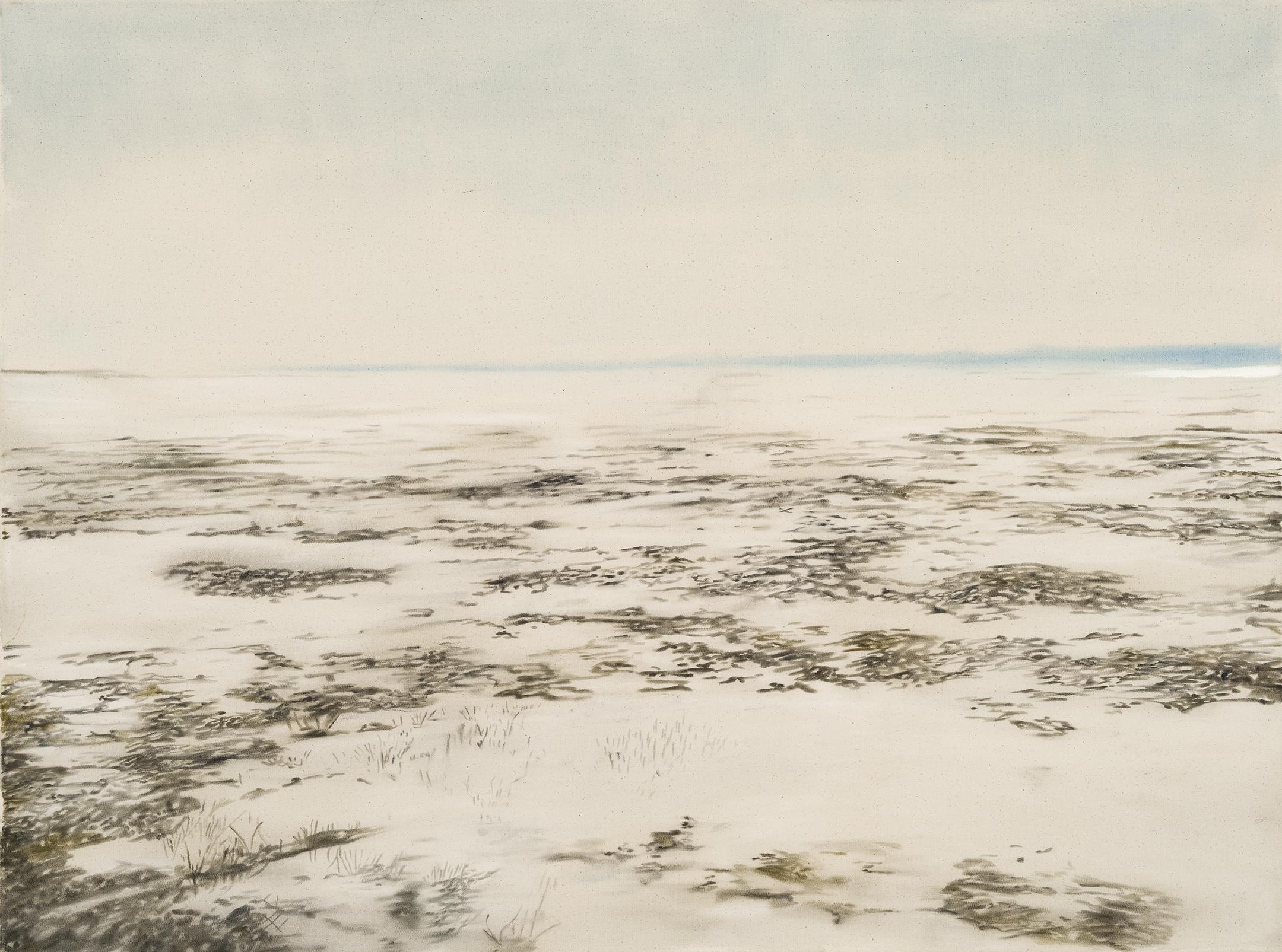 Paysage nordique 10 , 2016. Huile et fusain sur toile, 36 x 48 pouces