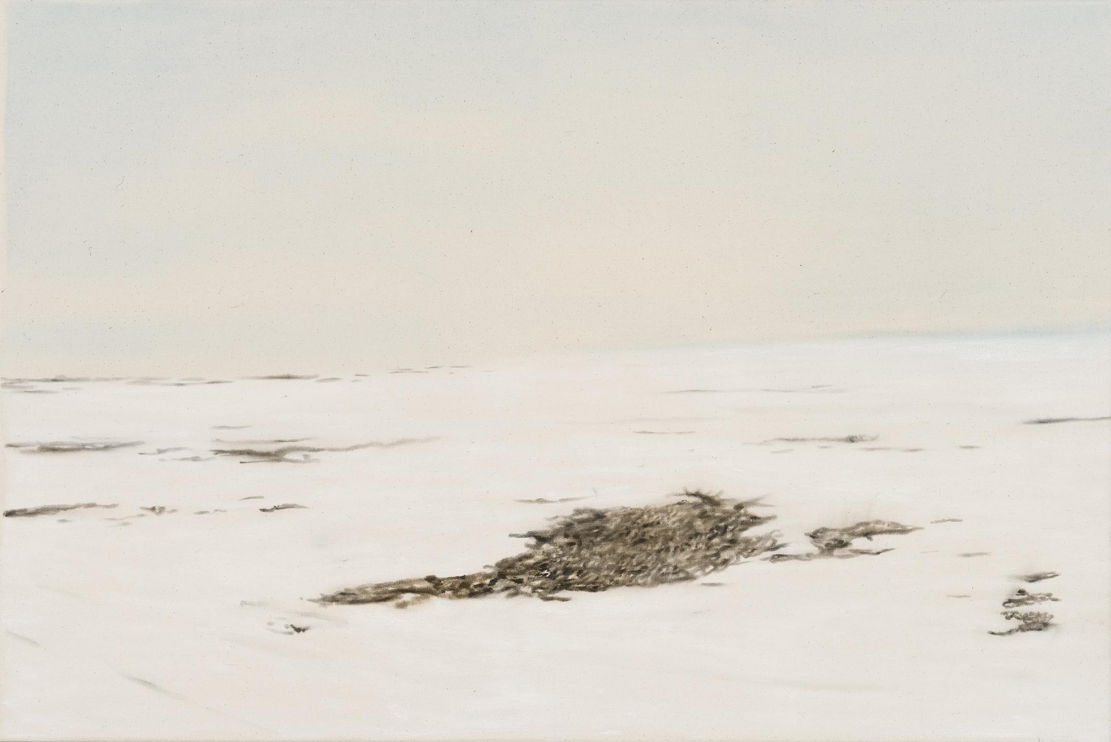 Paysage nordique 15 , 2016. Huile et fusain sur toile, 24 x 36 pouces
