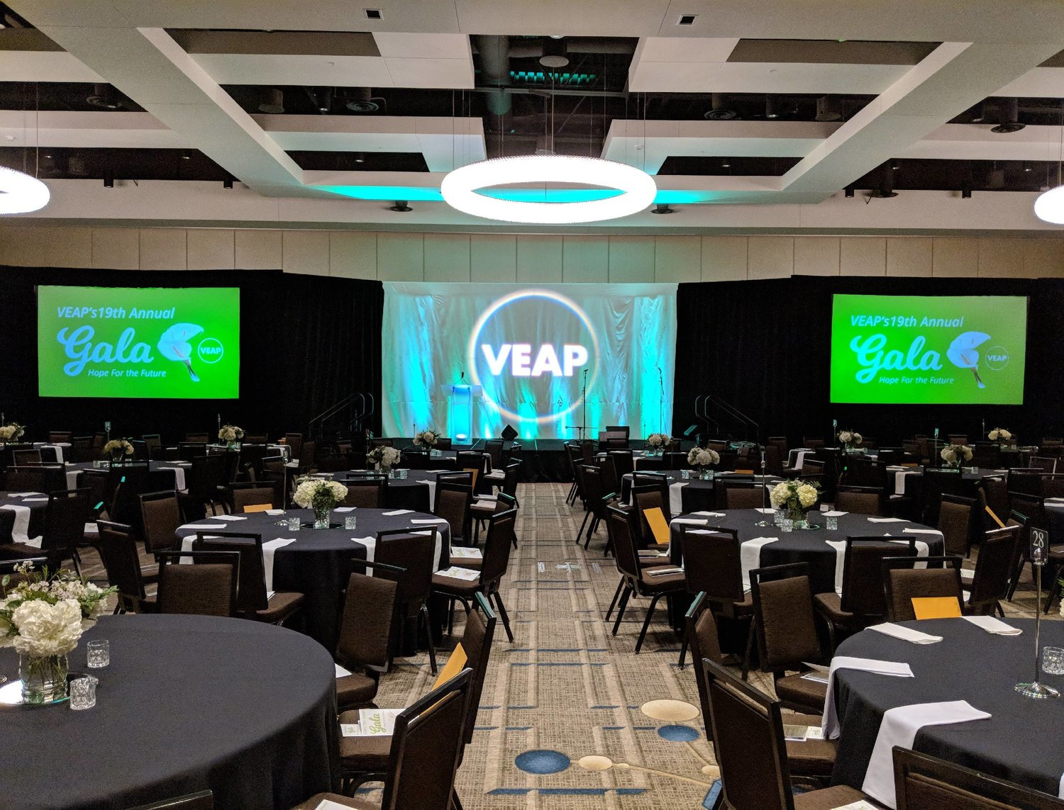 Picture of AV for You 8' x 14' Fastfold Screen with Drape rental