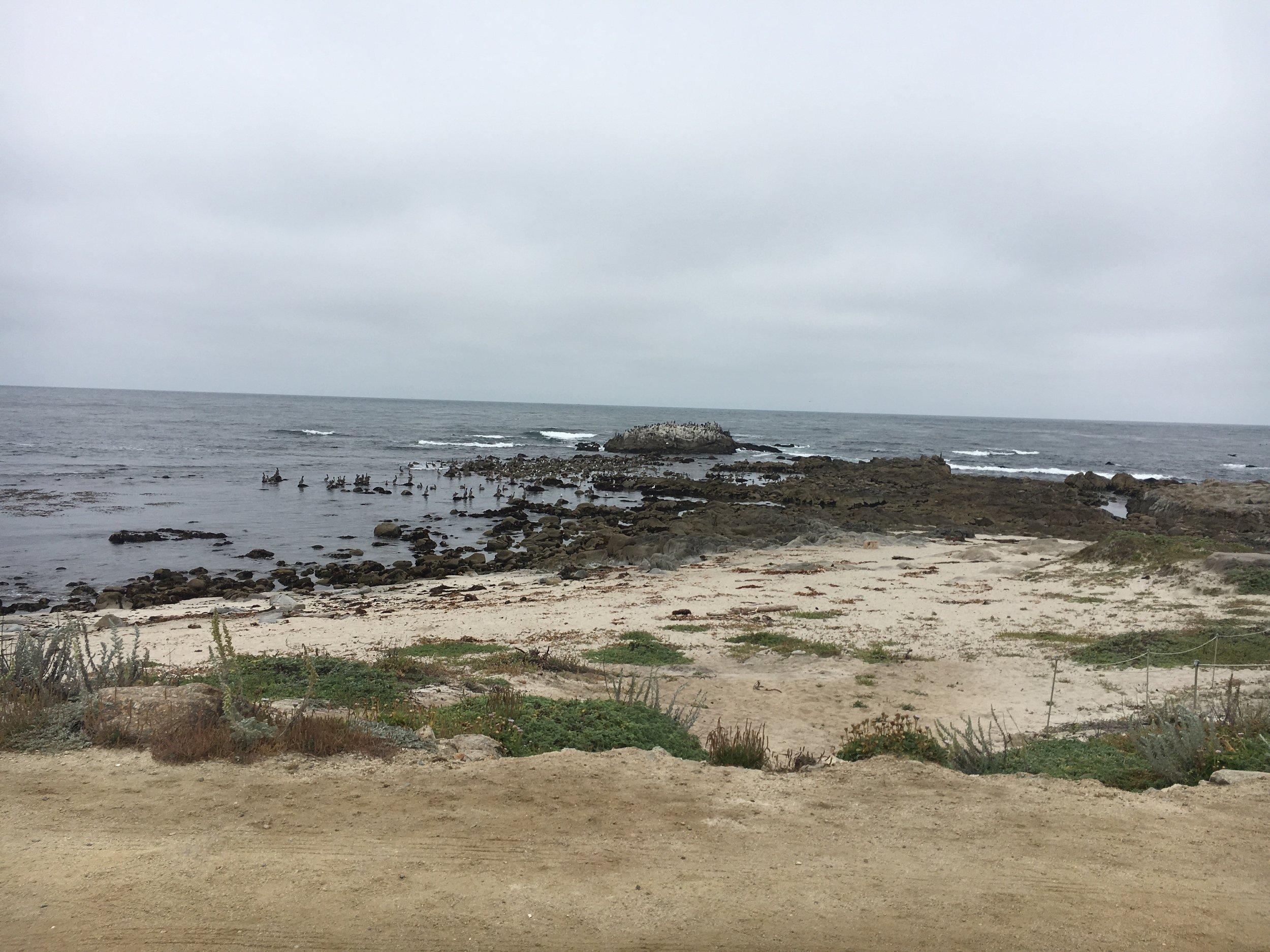 MontereyCoast.jpg