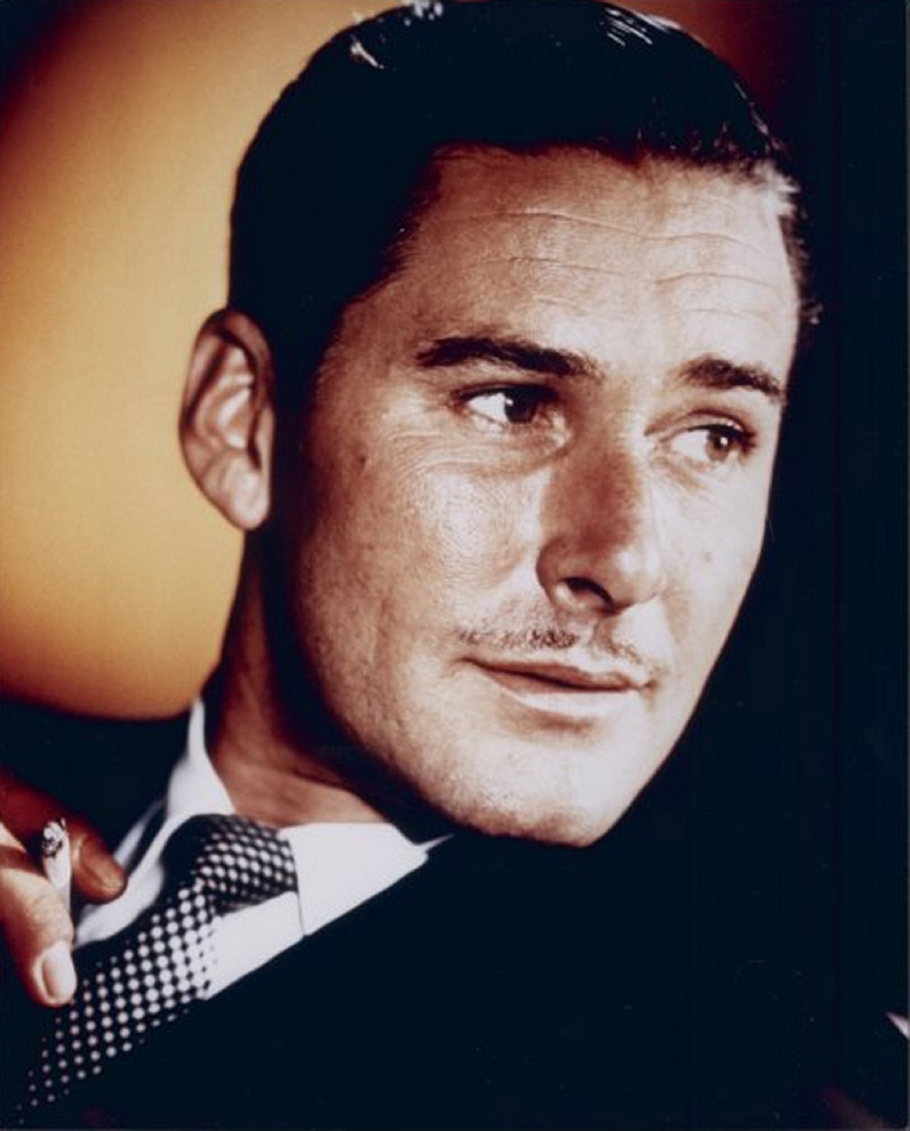 Swashbuckling Hollywood star Errol Flynn was the son of an Irish biologist.