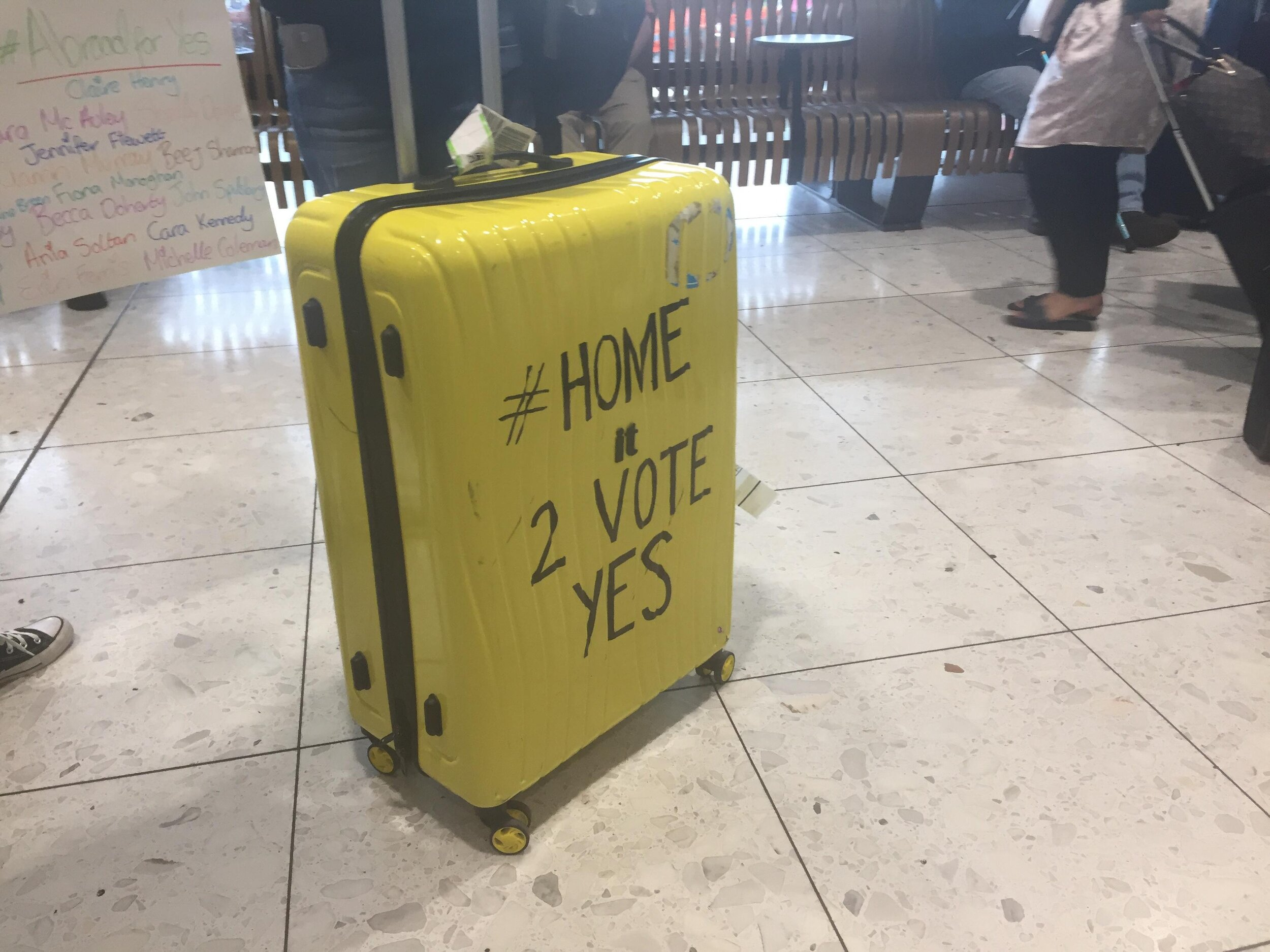 Many expats travelled to Ireland to have their say in the same-sex marriage and abortion referenda even though, as non-residents, they are officially denied a vote.