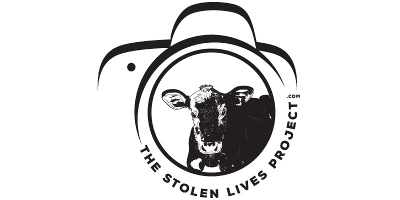 The Stolen Lives Project