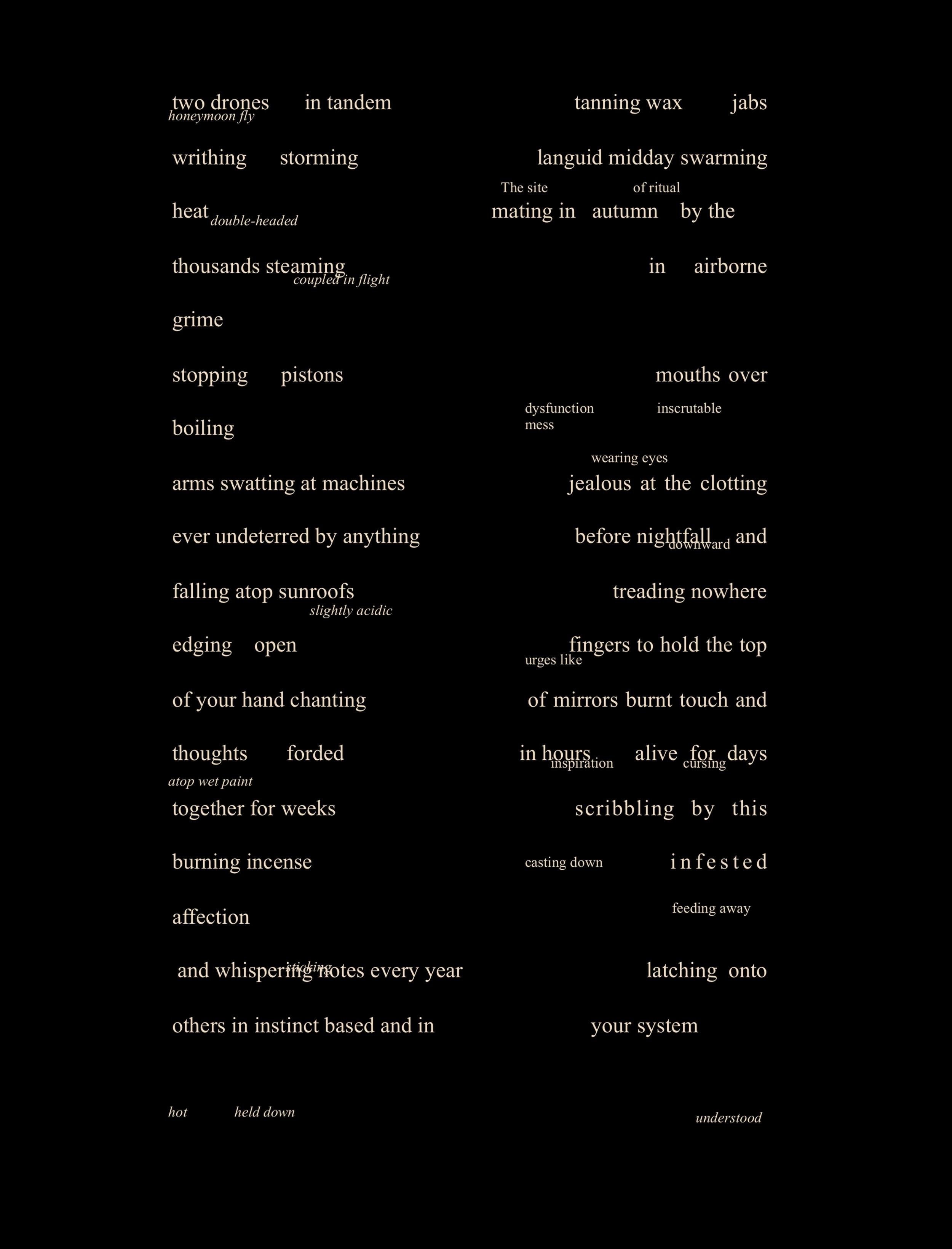 Jensen+Poem+Love+Bugs.jpg