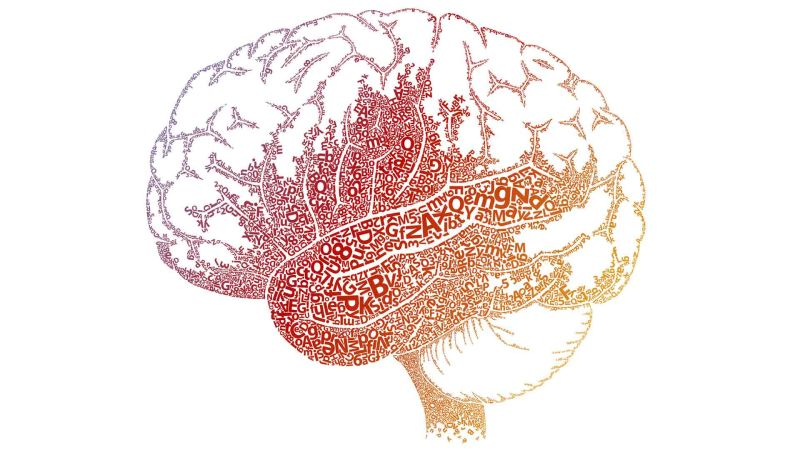 Understanding Dyslexia and the Reading Brain in Kids, MINDSHIFT