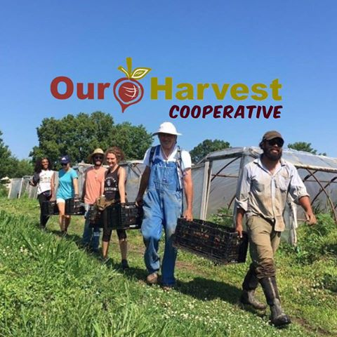 OUR HARVEST - We believe growing quality jobs, the best food, and skilled farmers helps strengthen the work force, support healthy living and give families & communities the best opportunity to flourish.