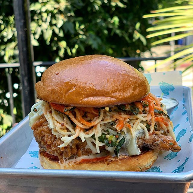 FRIED CHICKEN SANDO OF THE MONTH: CELERY ROOT & KALE SLAW | NATE'S LACTO FERMENTED PEPPER SAUCE | HUMBOLDT FOG | BUTTERMILK DRESSING | HVR SEASONING