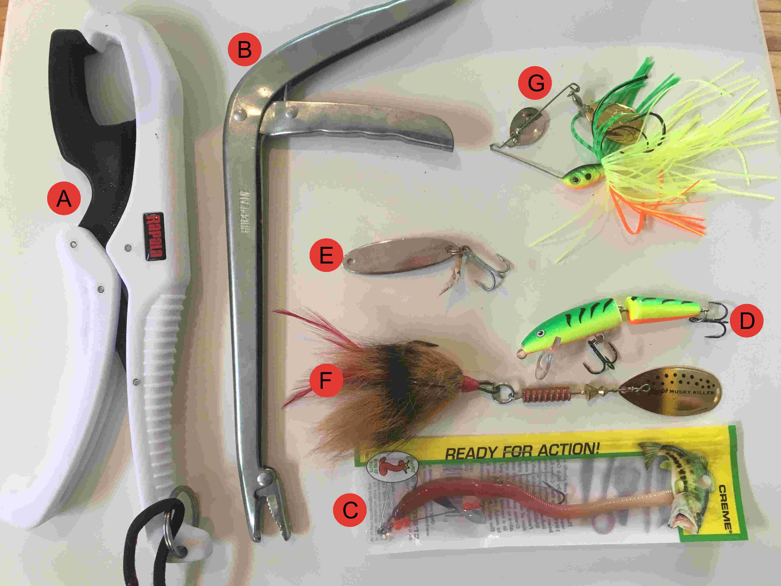 Sometimes fishing gear choices are subjective, so here are my personal picks.