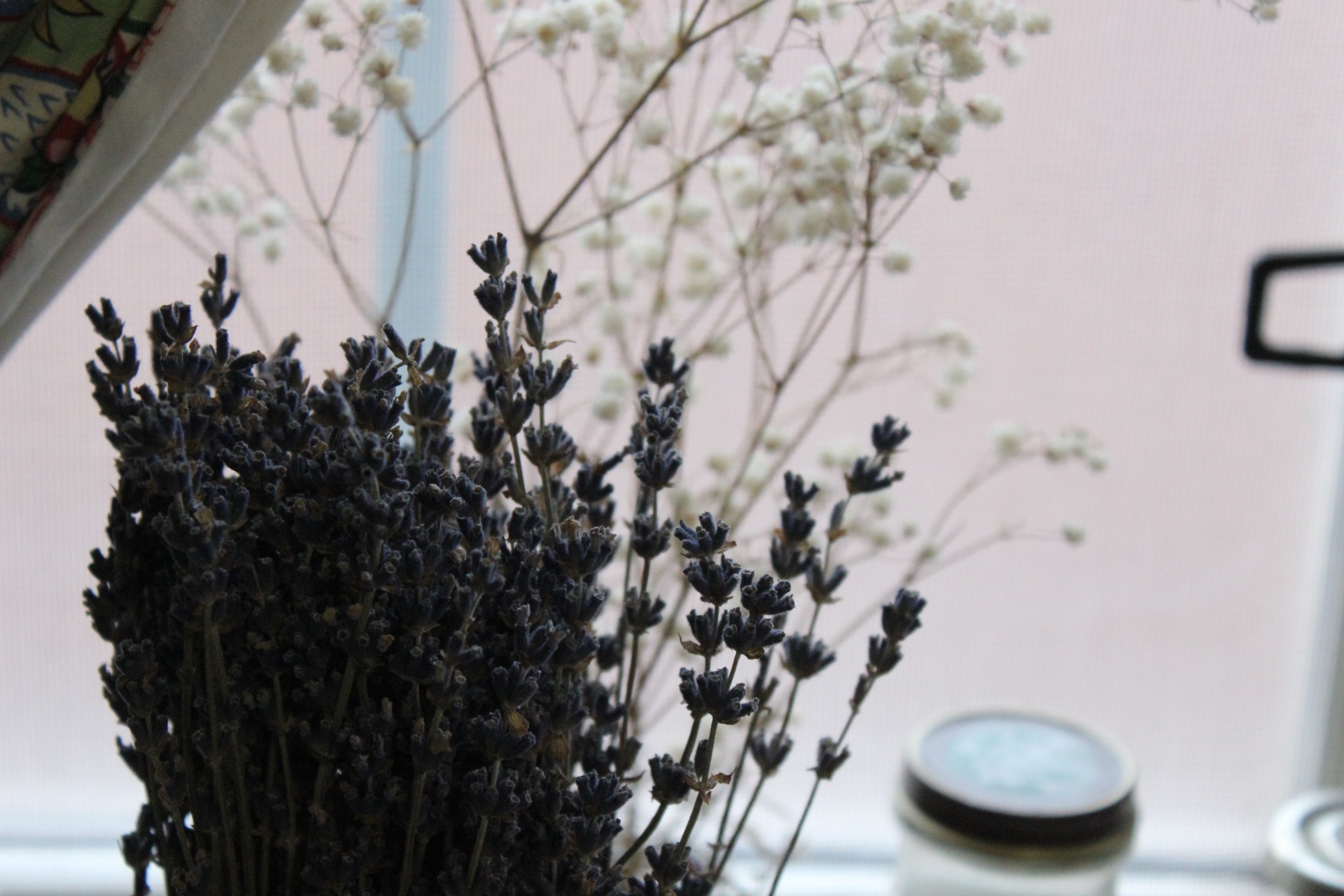 Lavender from Crown Flora Studios from Ethan