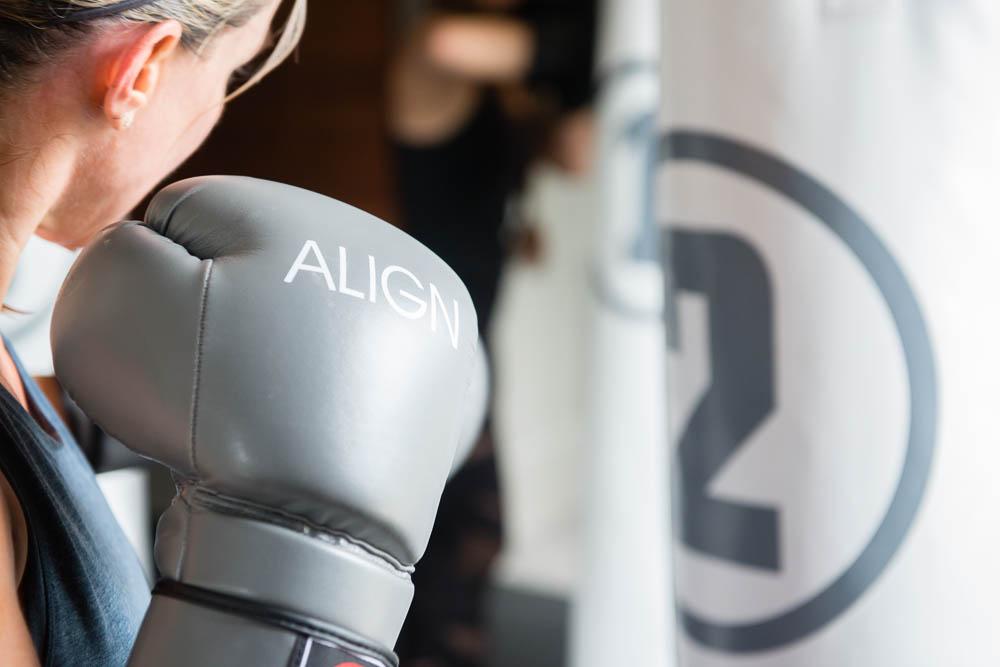 align glove.jpg