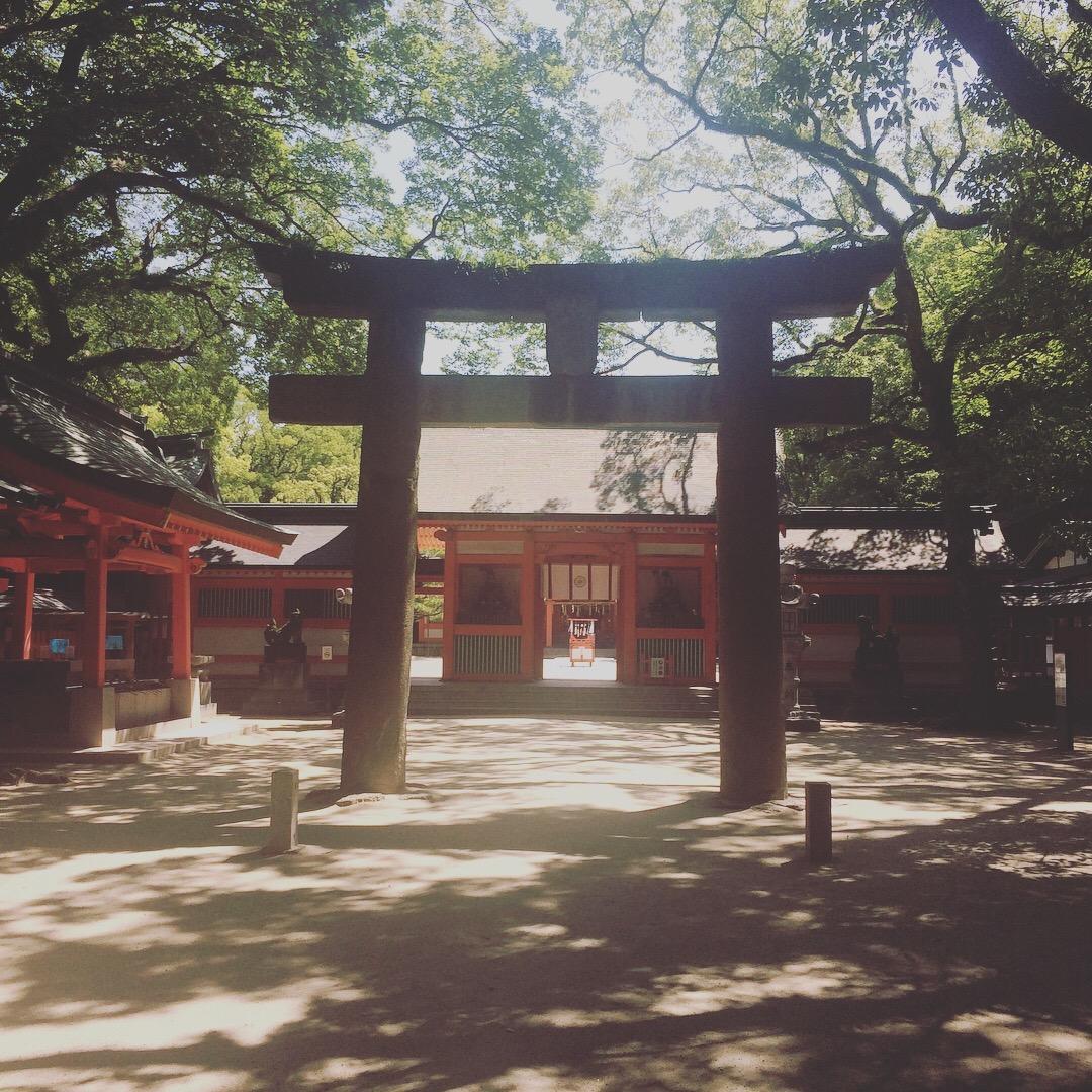 Sumiyoshi+IMG_8764.jpg