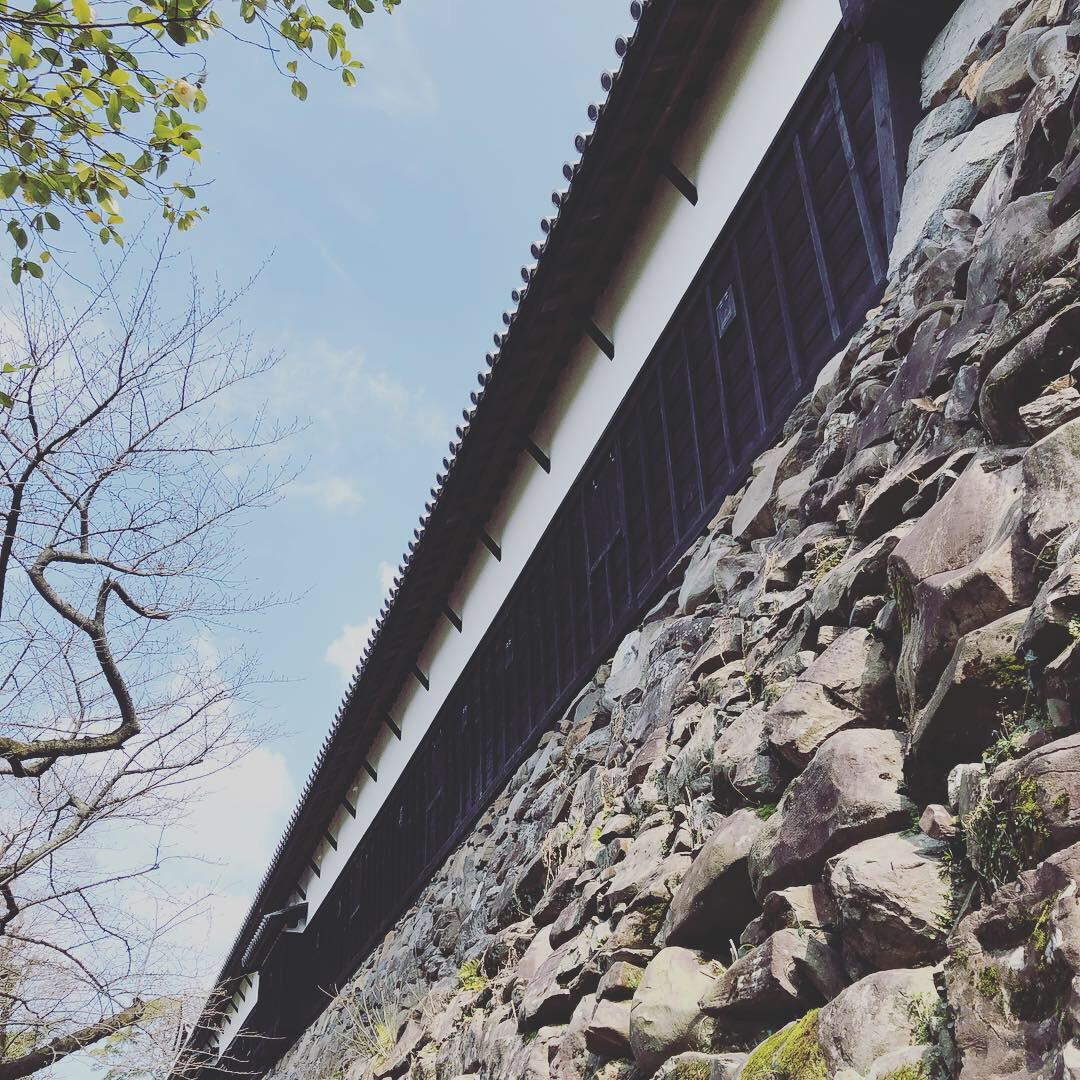 Fukuoka Castles.23D.jpg