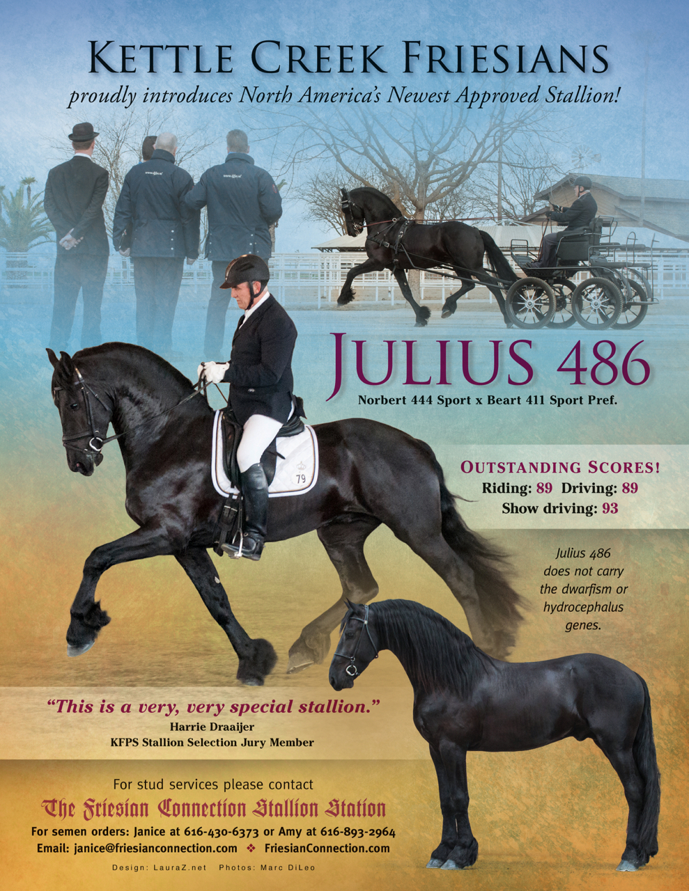 Julius ad7.jpg
