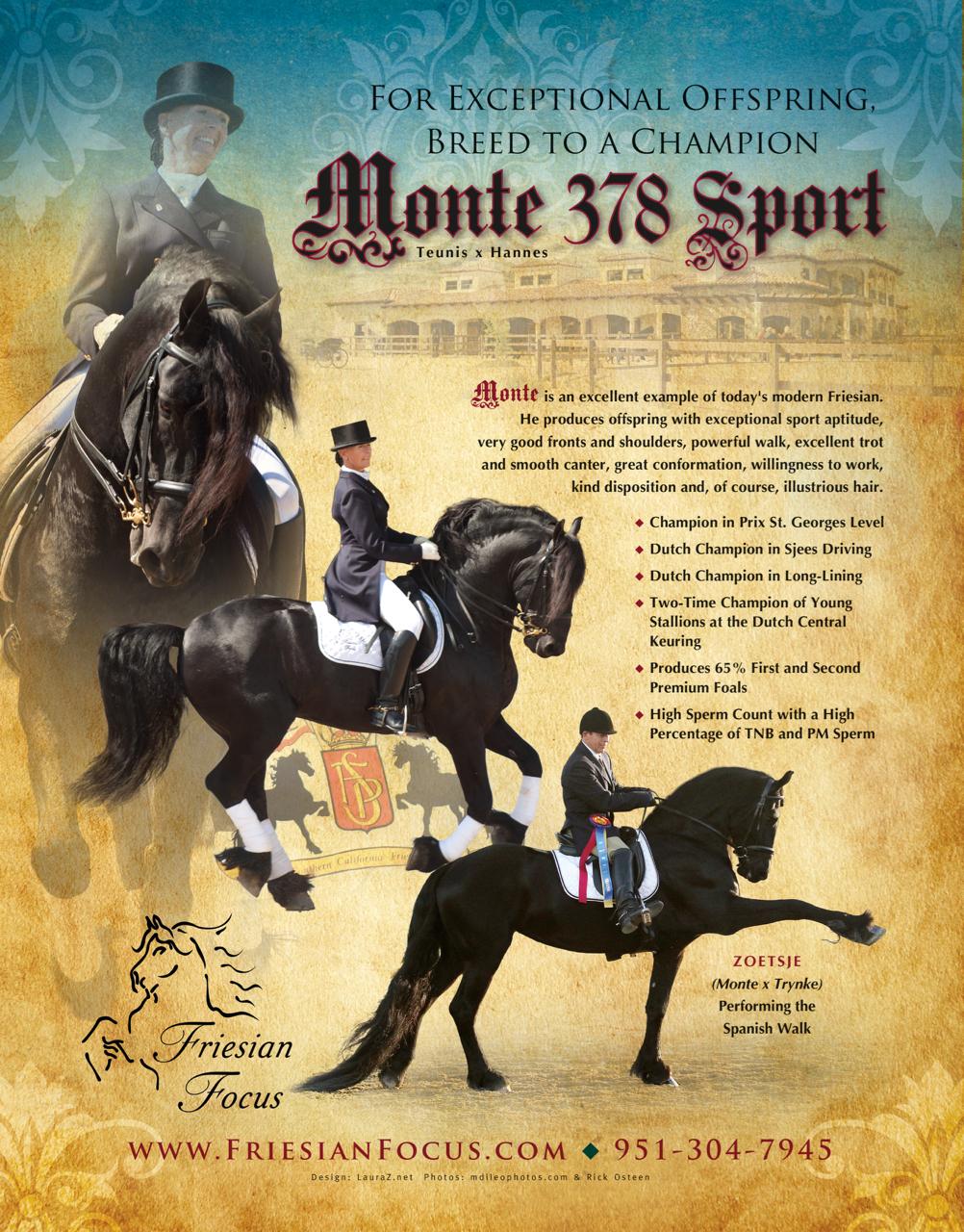 Monte 378 ad.jpg
