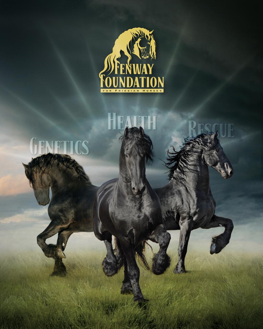Nanning Foundation Banner.jpg