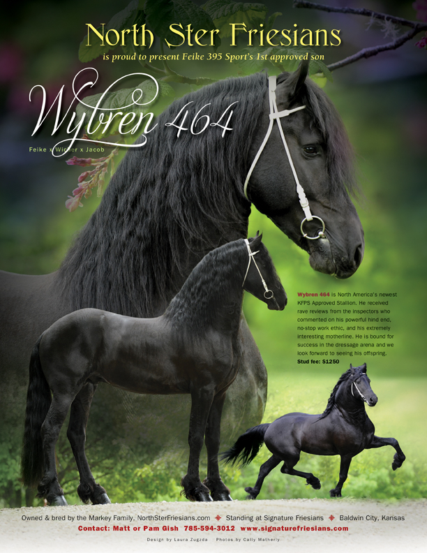 NSF Wybren ad4.jpg