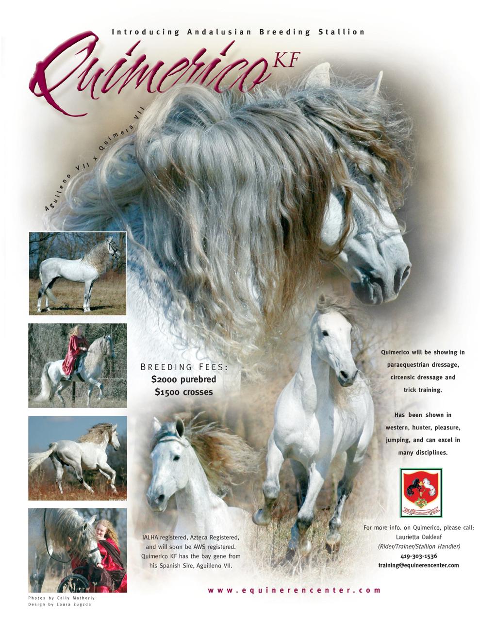 Quimerico flyer.jpg