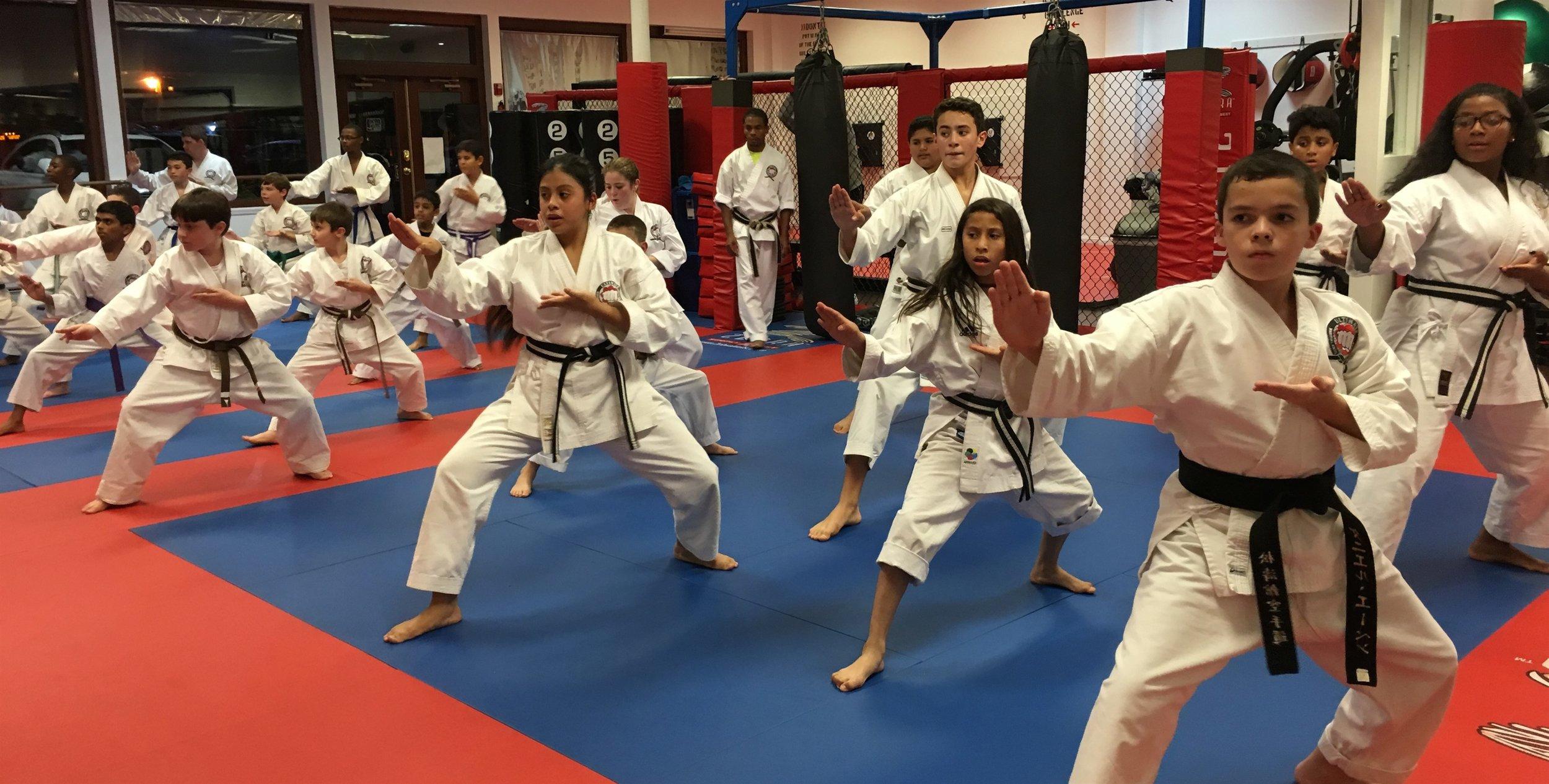 Karate Advanced.JPG