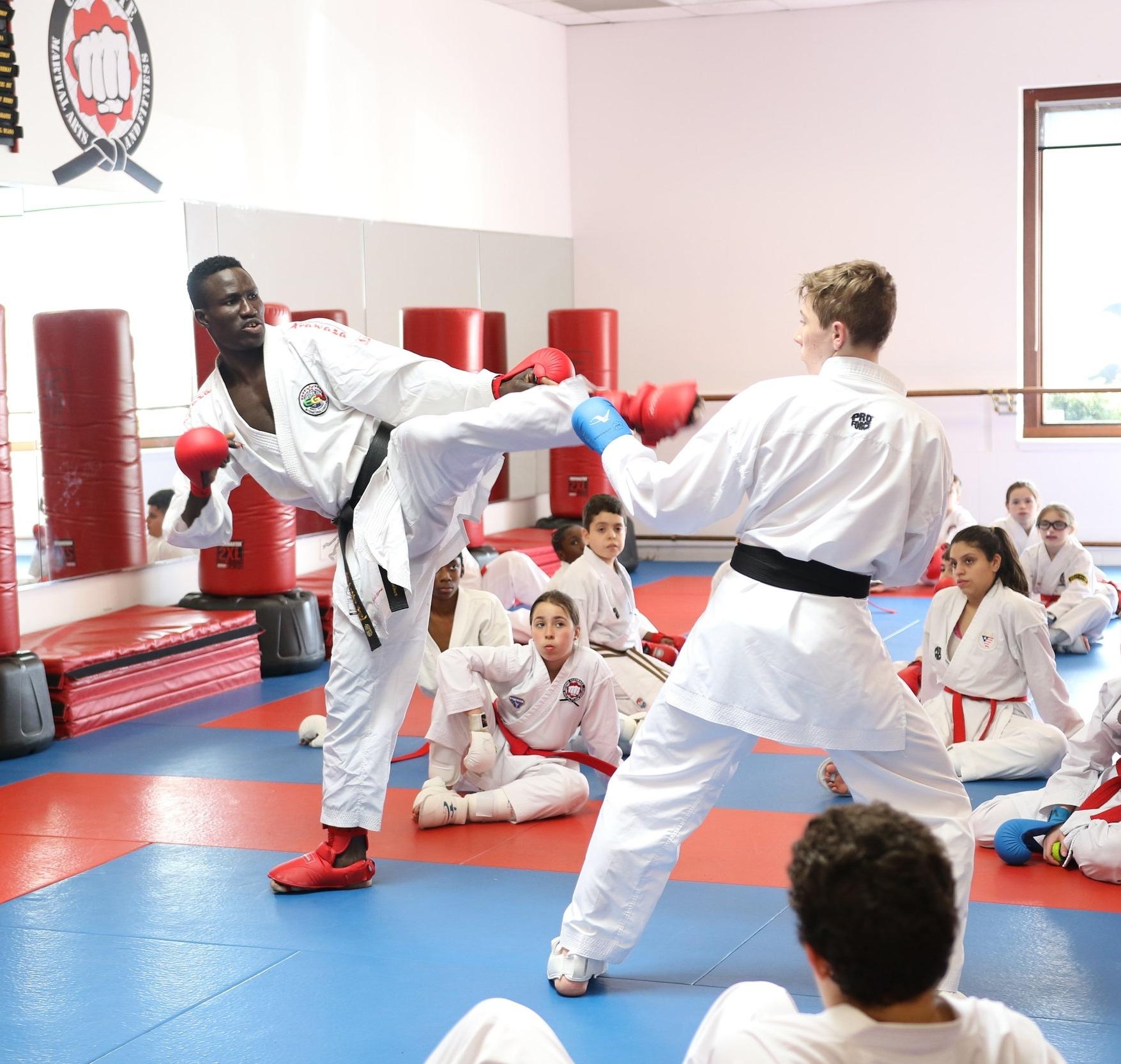 Kickboxing Adults.JPG
