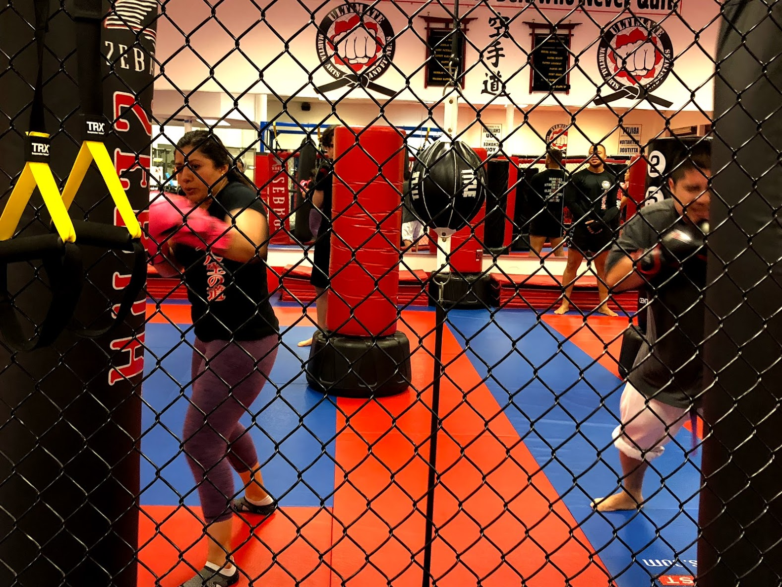 KickBoxing From Behind Fence.jpg