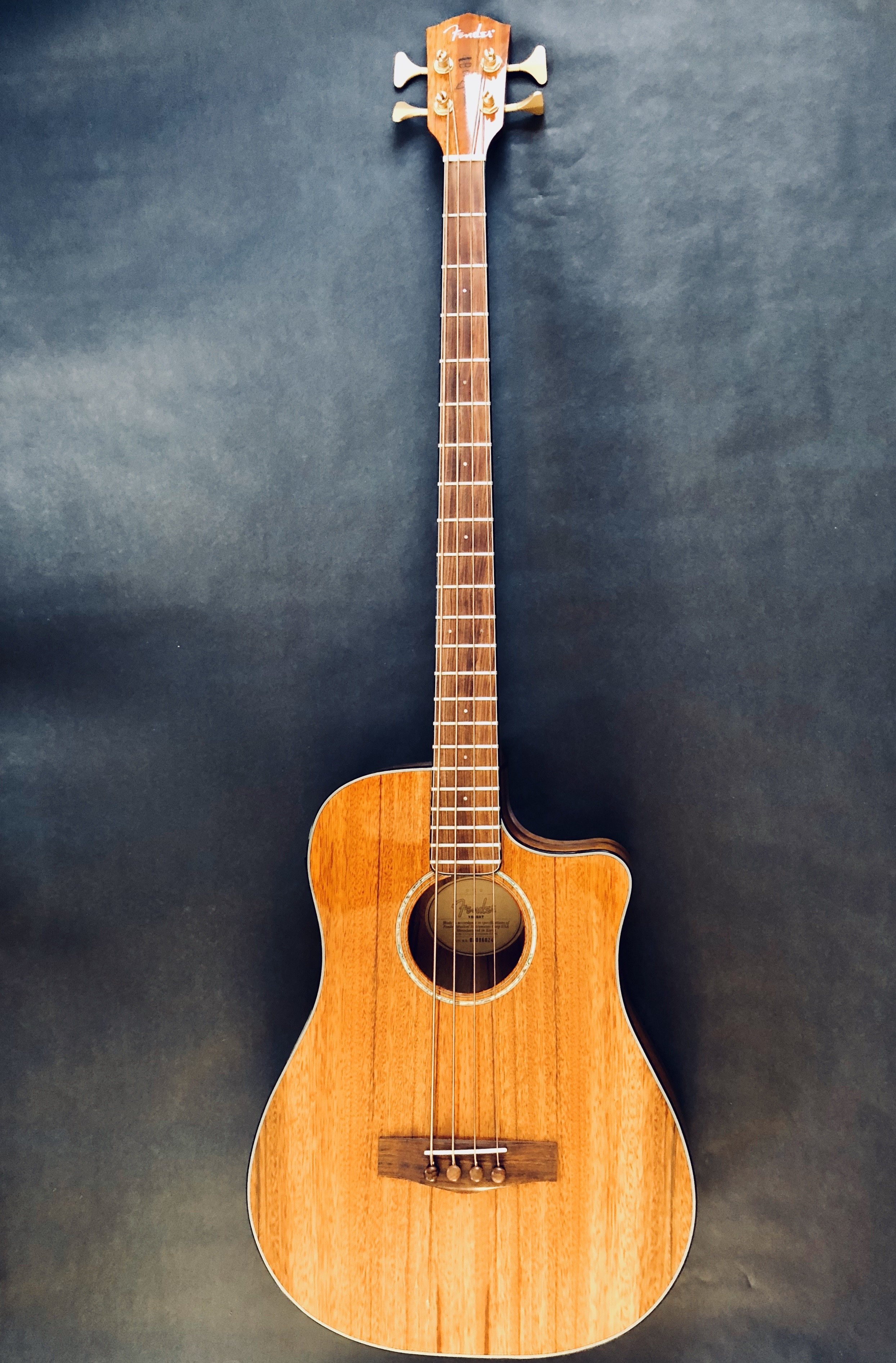 Fender Victor Bailey Acoustic/Electric Bass