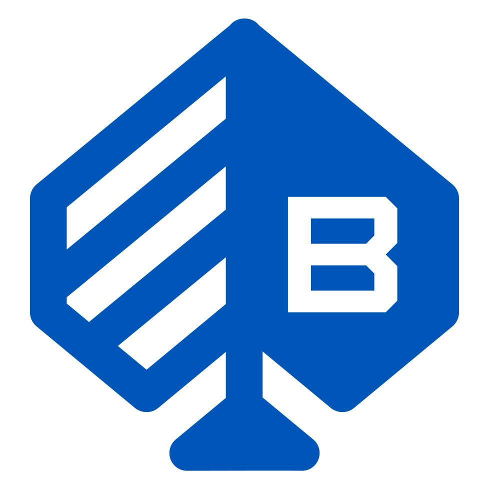 TNTRM_logos_bragg.png