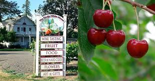 - The Gorge White House offers a yummy food truck, freshly picked fruit, a gift shop with local art, Tillamook ice cream, cider, wine, beer and views!