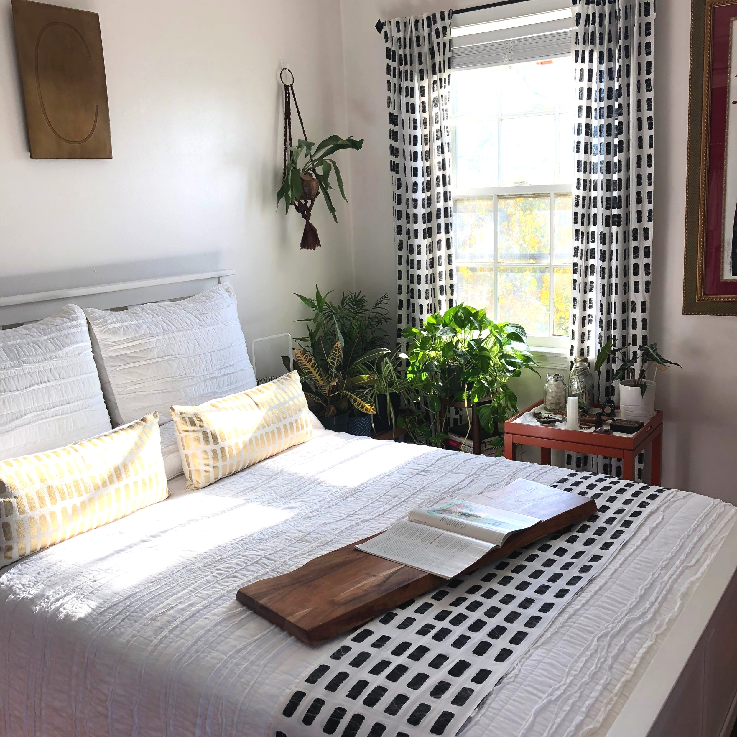 Bedroom_Plants_6.jpg