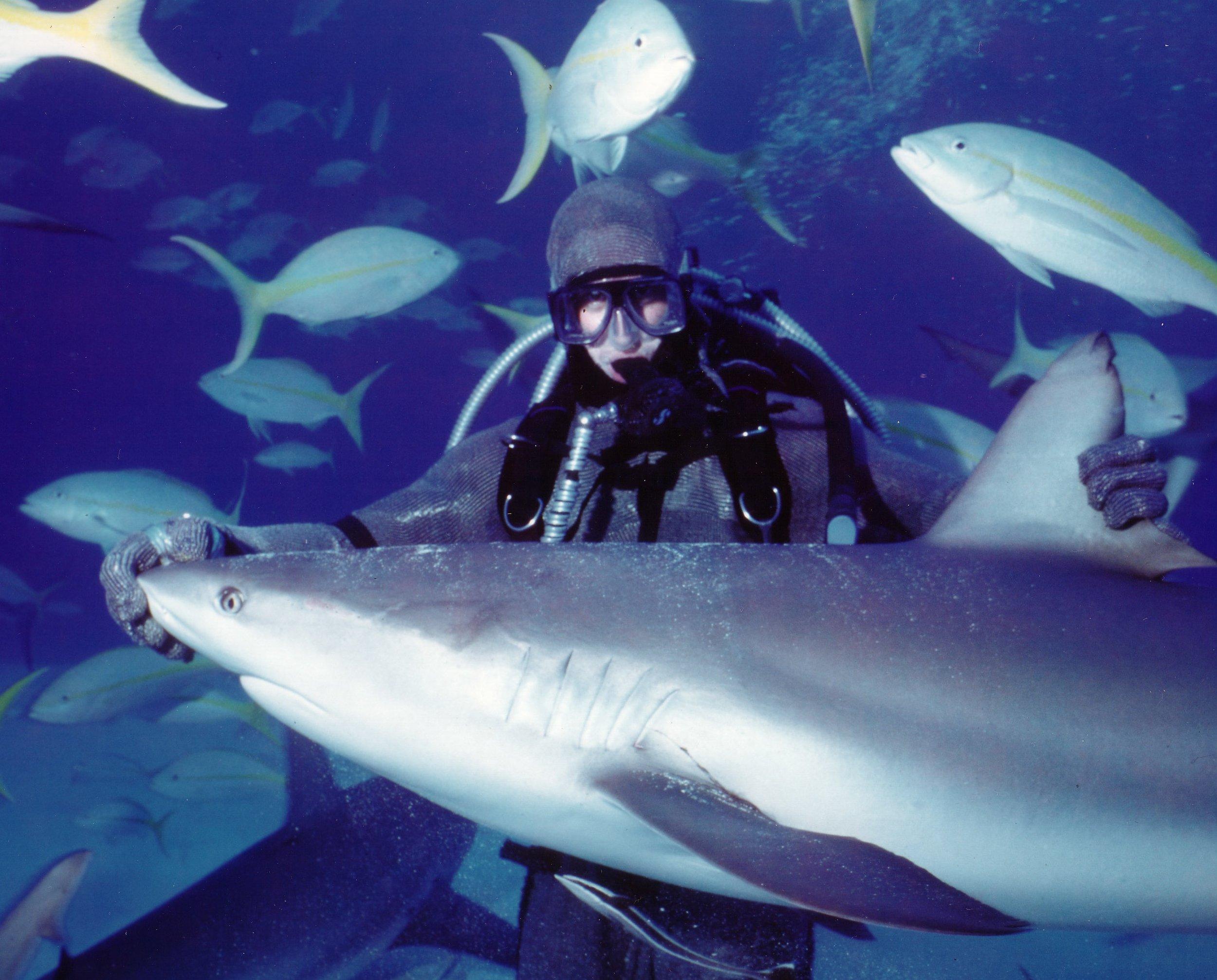 Shark and Will (002).jpg
