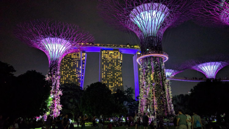 Singapore by night hotel.jpg