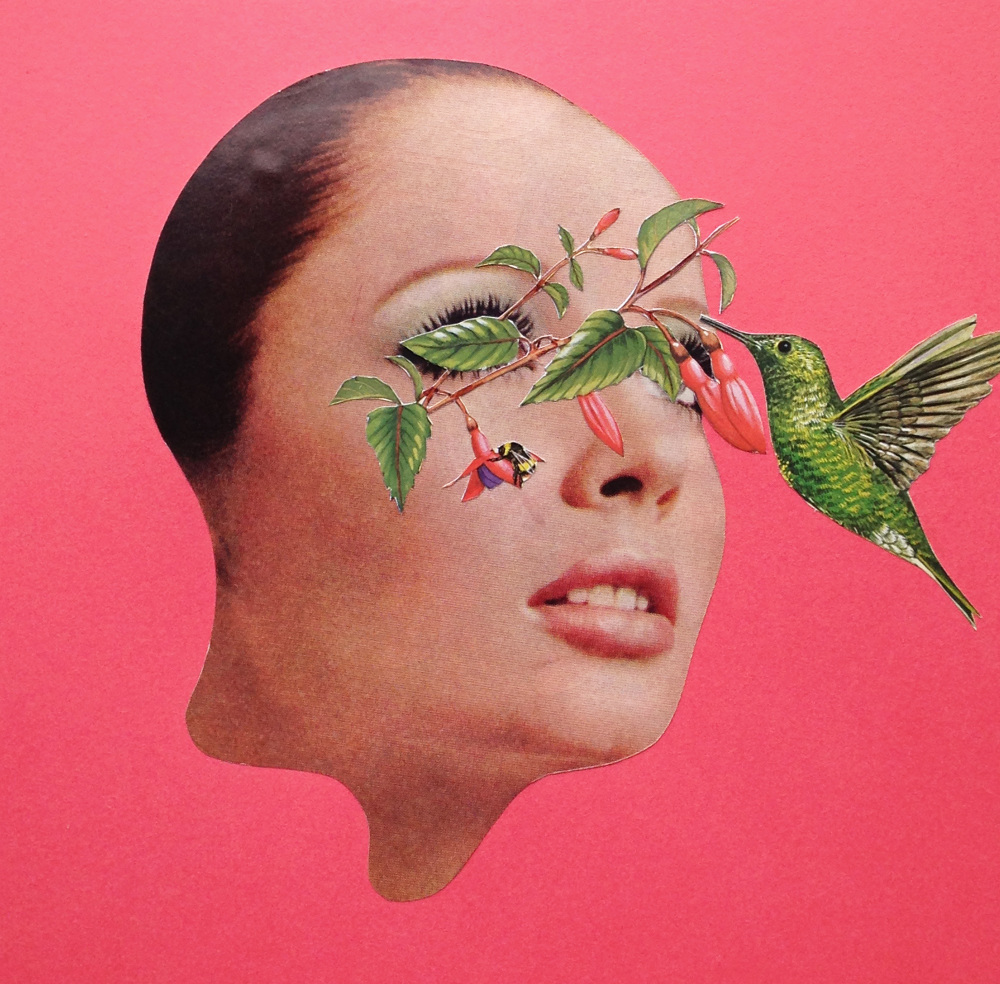 Pollination Penetration  Hand Cut Paper Collage