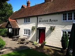 scarlett-arms.jpg