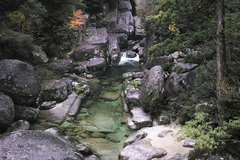 yakusugiland_yakushima_japan_thevoyageur13-1500x1000.jpg