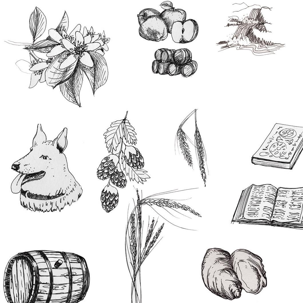 illustrations-sq.jpg