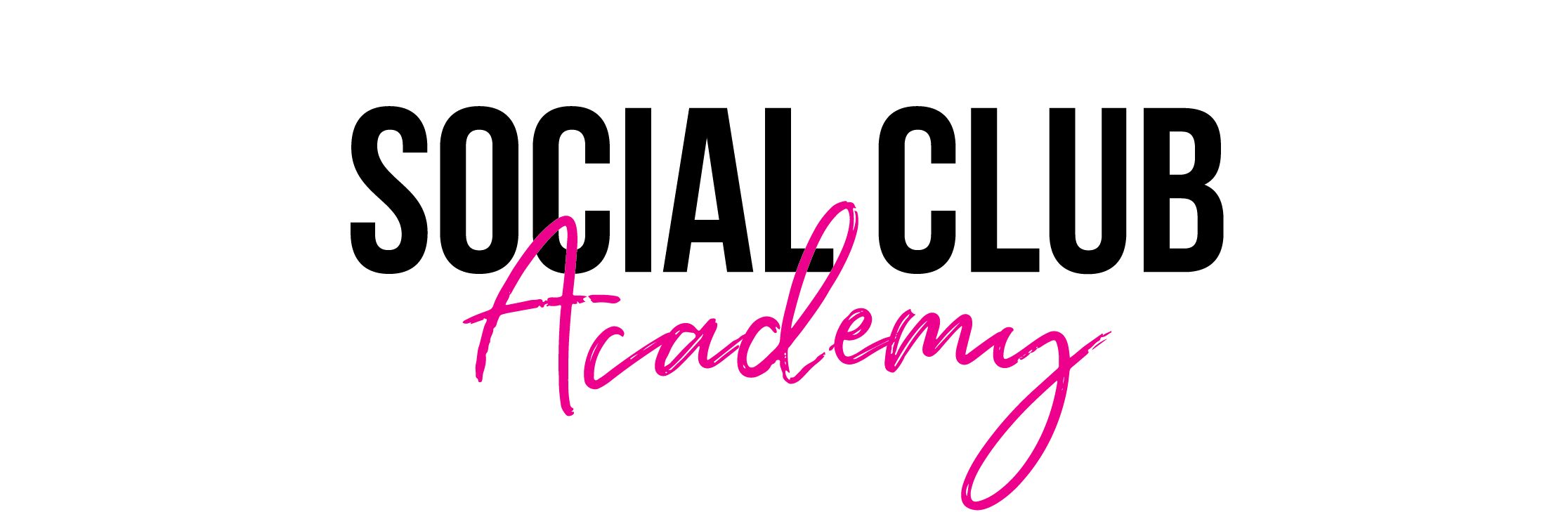 VMSC_Logo_Academy_Academy.png
