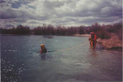 line swimmer1.jpg