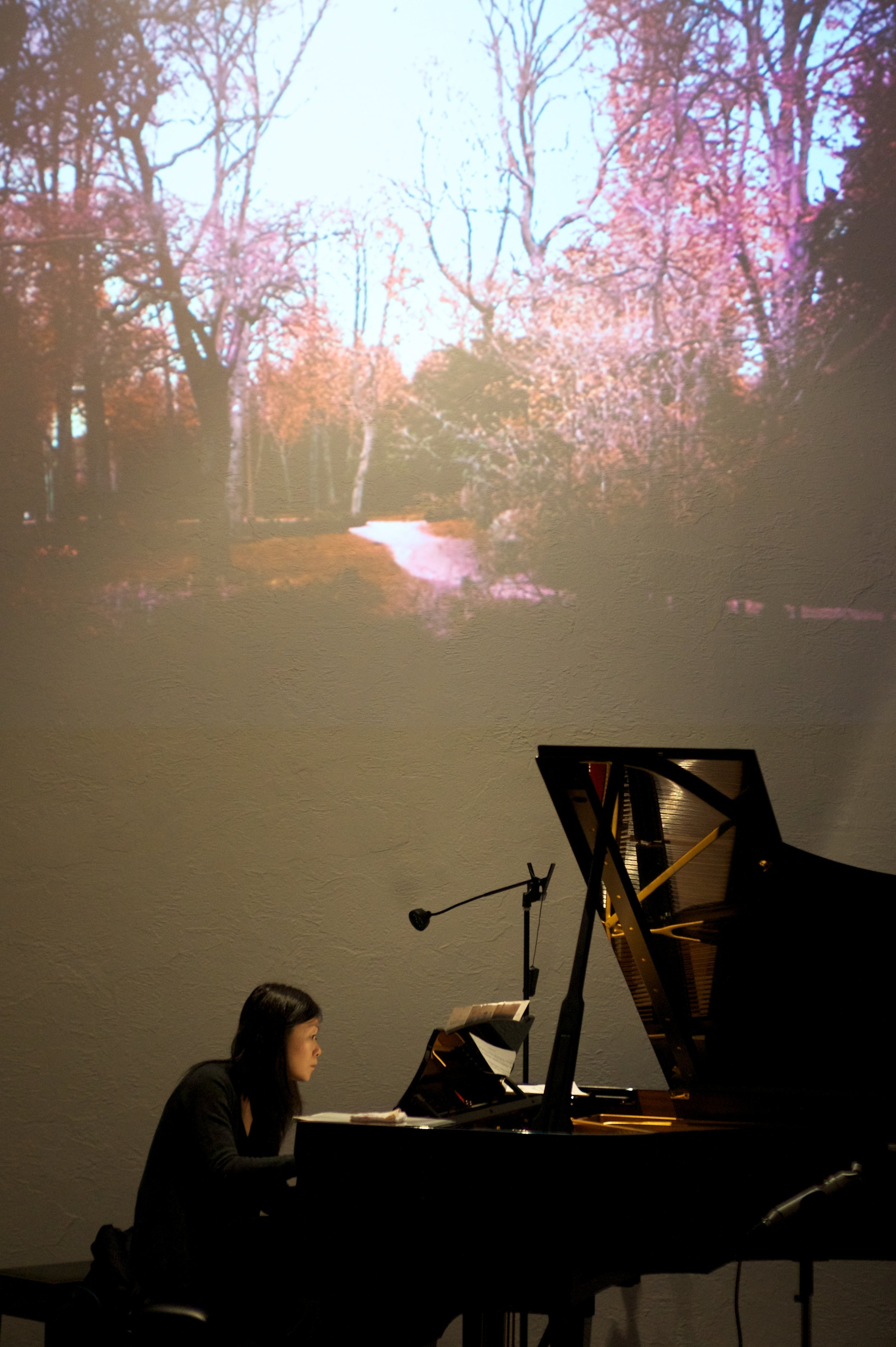 Aquarelles   (2012) Music by Yuriko Kojima, for piano. Live-video by Elaine Thomazi Freitas.  World premiere .