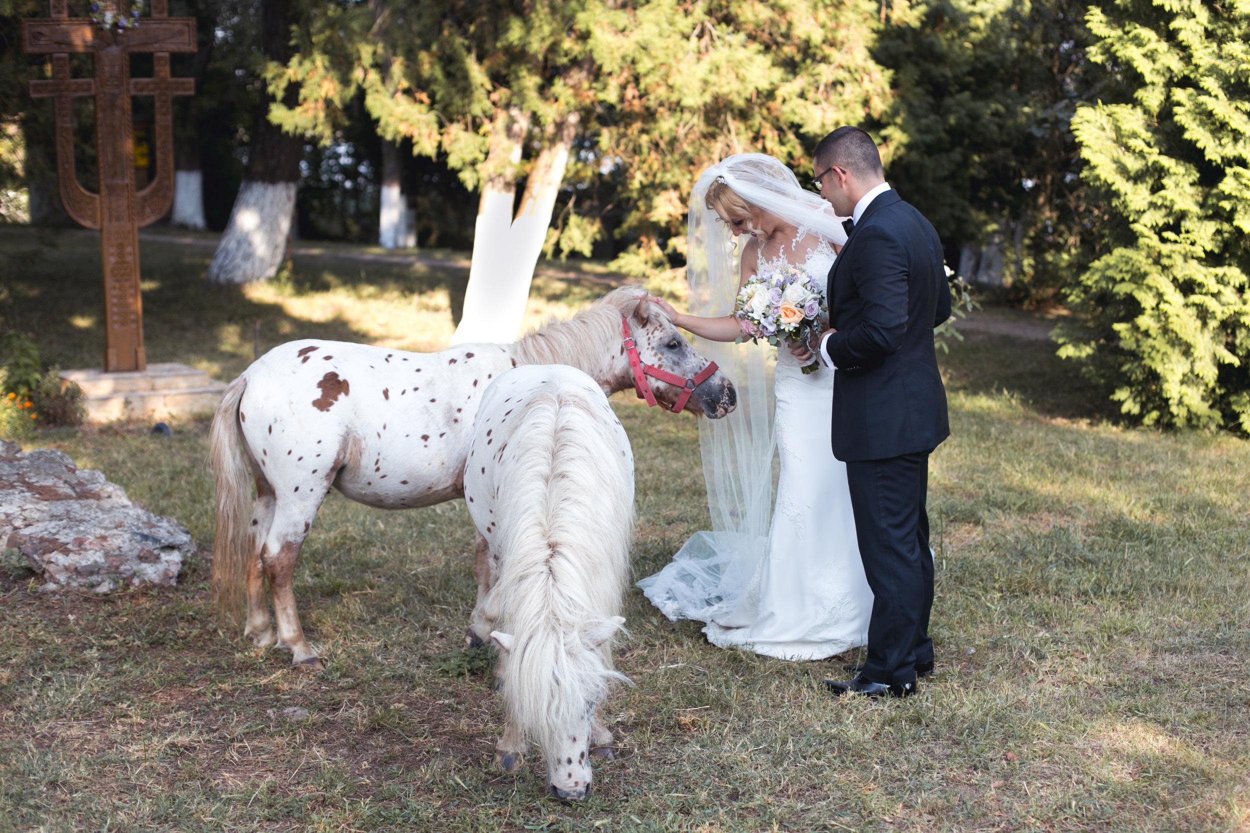 U Wedding (5).JPG
