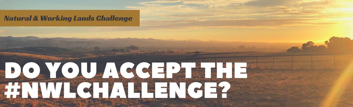 NWL challenge banner_highres.png