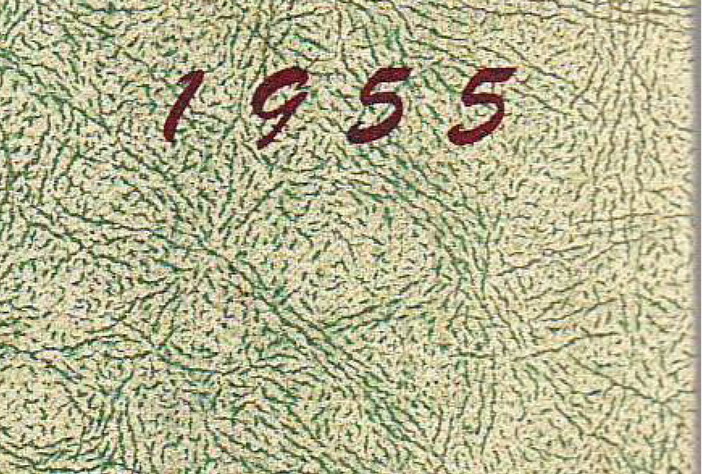 1955Texture.png