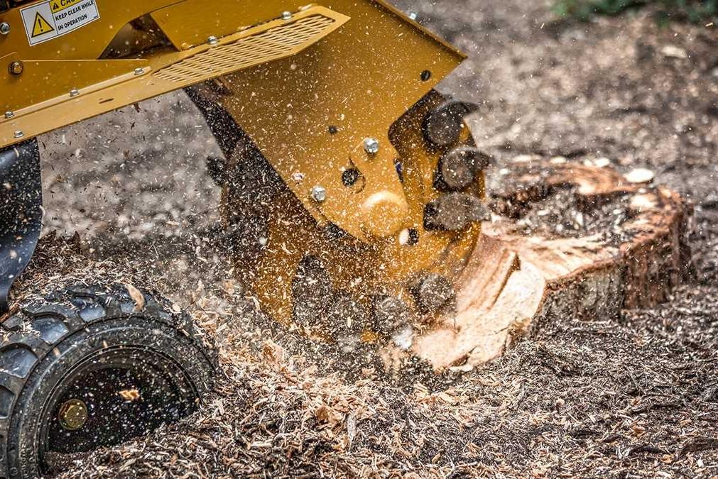 stump-grinding-01.jpg