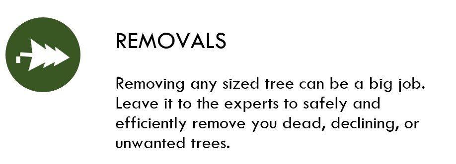 Removals Icon.jpg