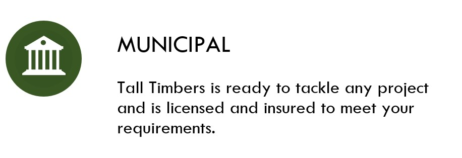 Municipal Icon.jpg